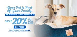 August 2019 Dog Bed Promo