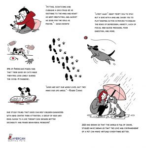 Emotional Support animal infographic