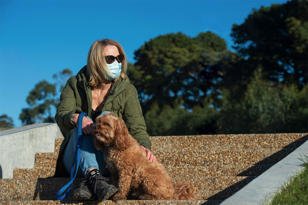Dog in a pandemic