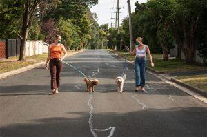 Masked walking Dog Social distancing