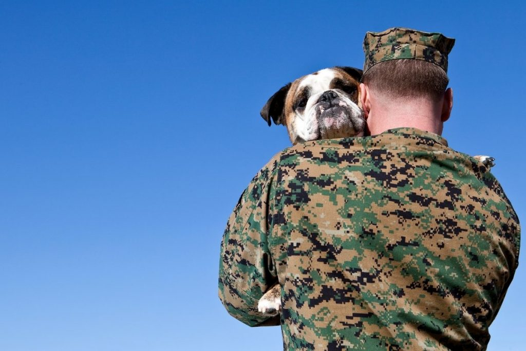 Can Service Dogs Help with PTSD?