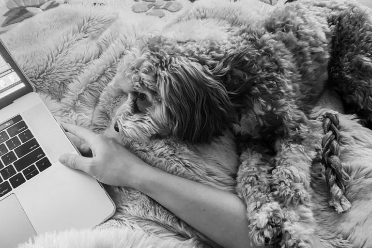 My Journey with Anxiety and a Pup named Cooper: An Interview with April Ashcrop
