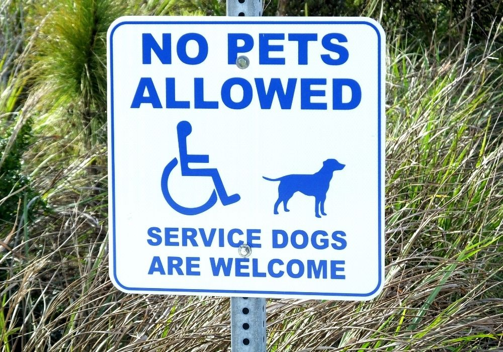 Where is My Service Dog Allowed?