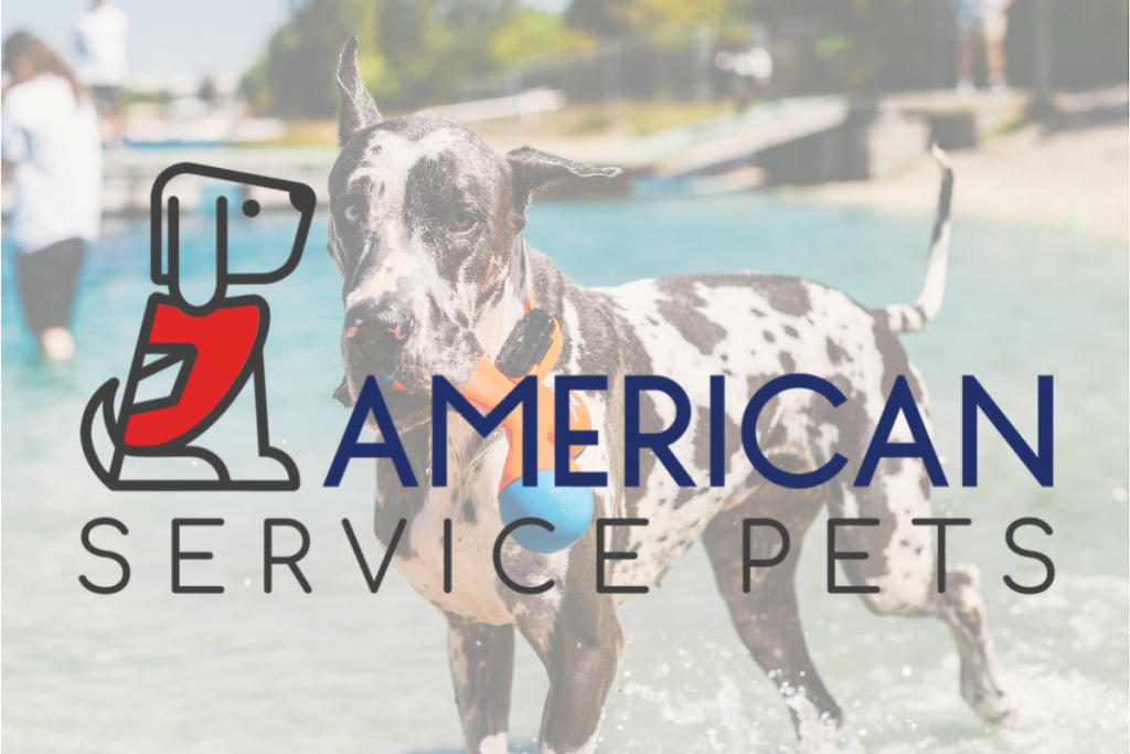 Get Your Pet Certified as an Emotional Support Animal in Florida Today!