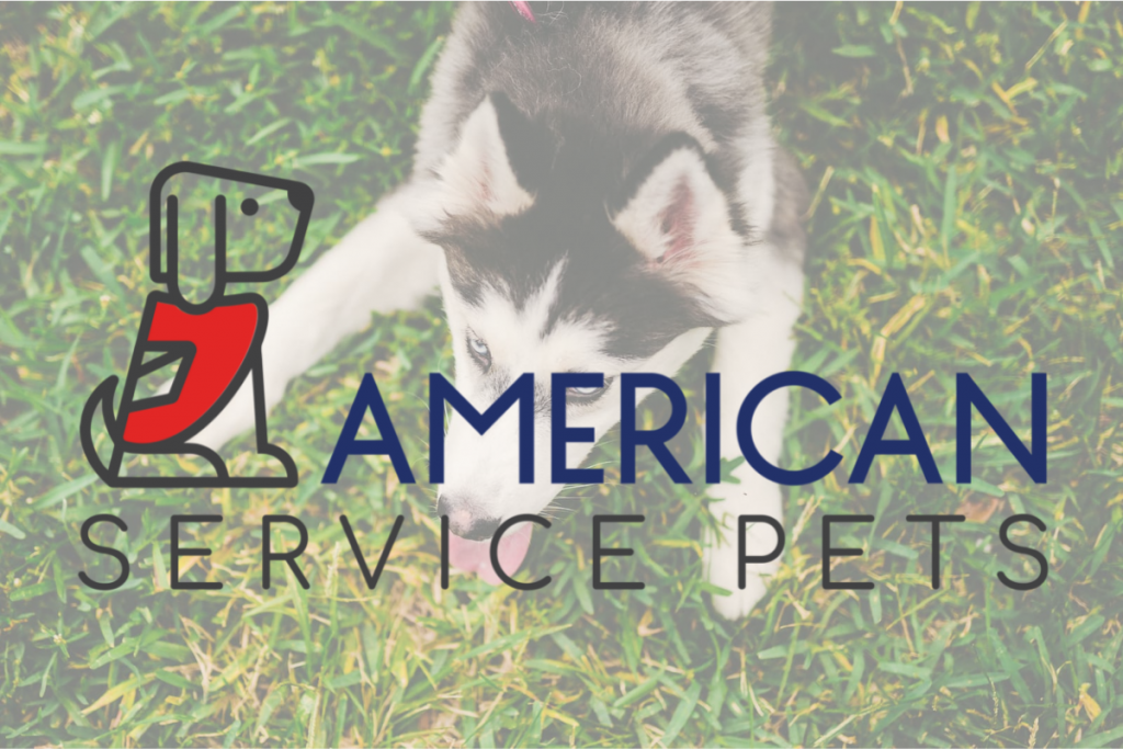 How To Get Your Emotional Support Animal Letter in Wisconsin with American Service Pets