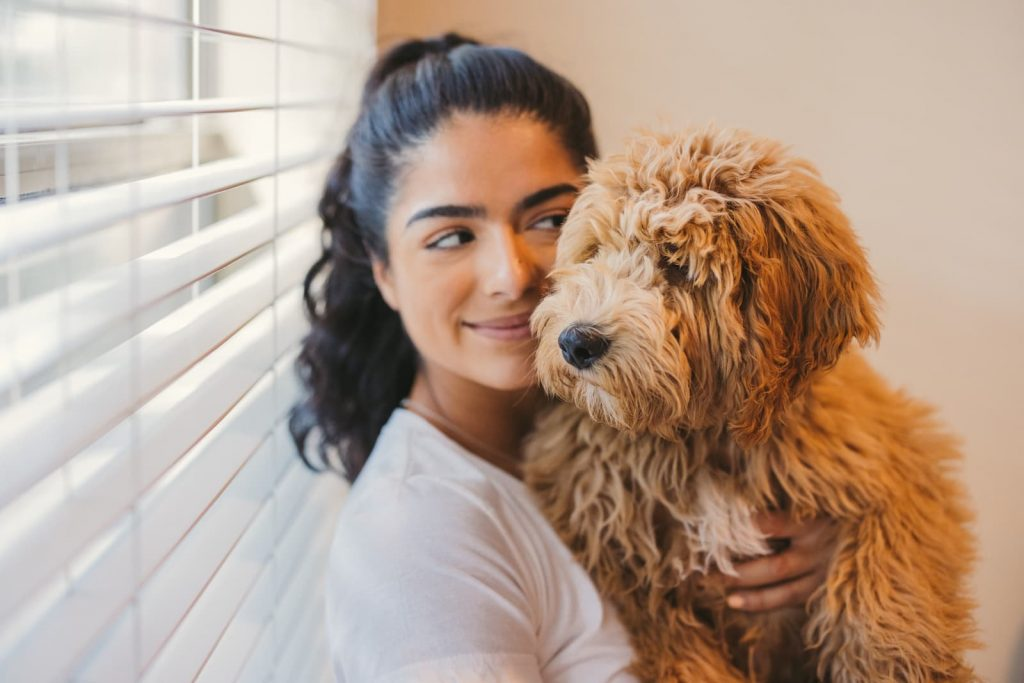 Housing Laws for Emotional Support Animals in Minnesota