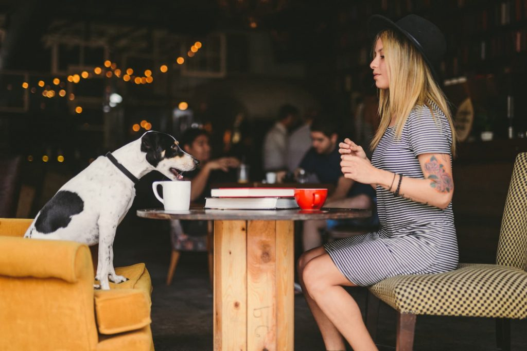 Workplace Laws for North Carolina Emotional Support Animals